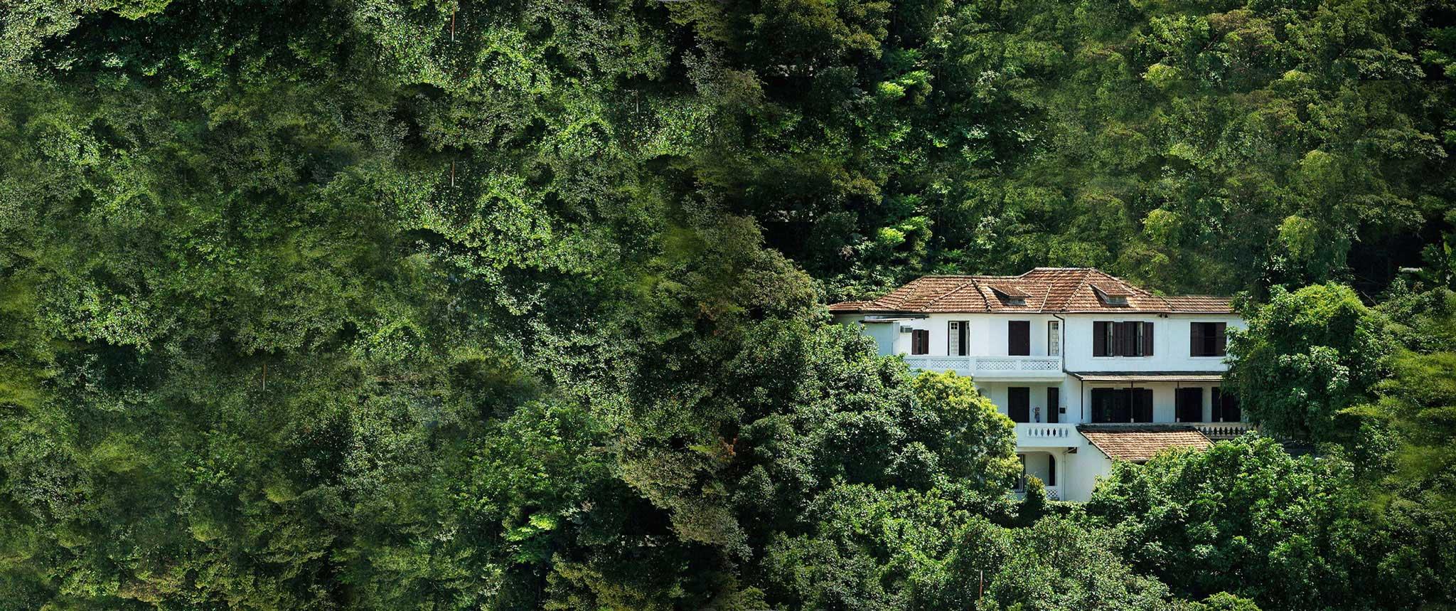 2 . Casa das Artes de Laranjeiras
